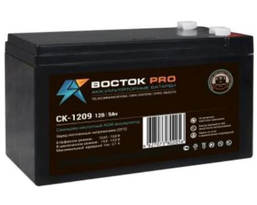 Аккумуляторная батарея Восток СК-1209 (12V / 9 Ah)