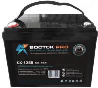 Аккумуляторная батарея СК-1255
